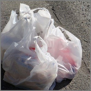 Recycling Plastic Bags – Save the Environment and Save Money