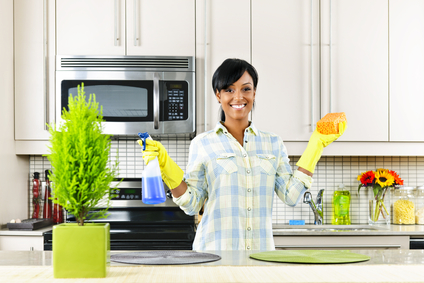 Professional House Cleaners Image