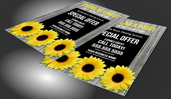 Cleaning Company Flyers
